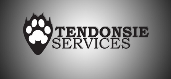 TendonsieServices